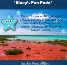 """Bluey's Fun Facts"""