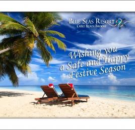 Happy and Safe Festive Season